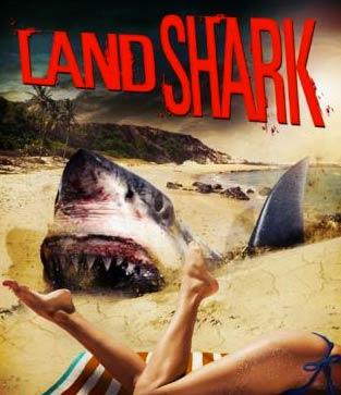 kand-shark-cover-artwork