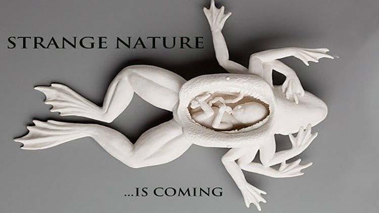 strange-nature-practical-fx-horror-film