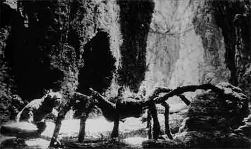 king-kong-spider-canyon