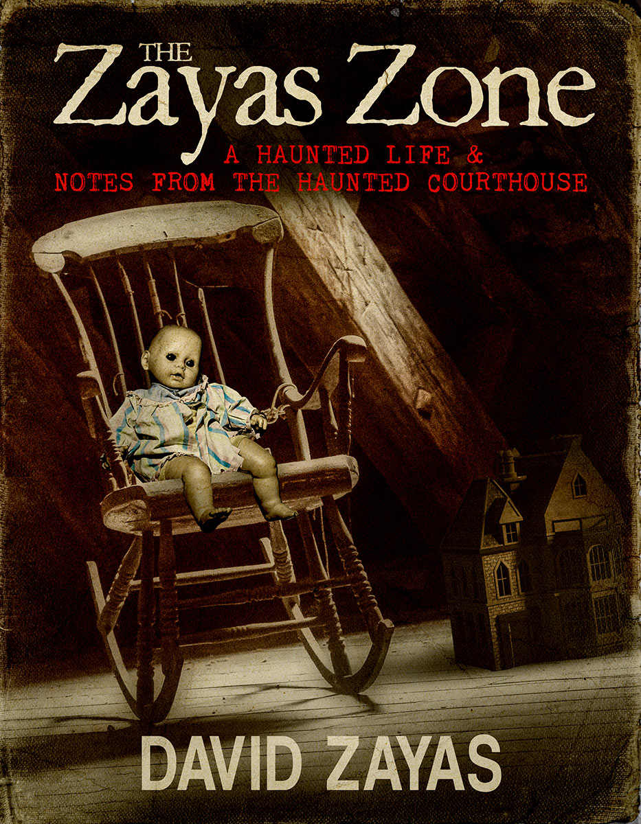 ZayasZone_BookCvr_HiRes